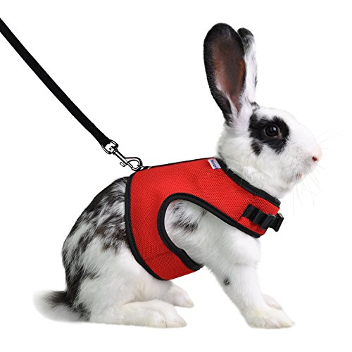 Image of Niteangel Adjustable Soft Harness with Elastic Leash for Rabbits (L, Red)