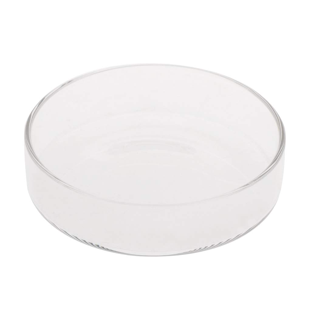 Thobu Fish Tank Feeder Aquarium Shrimp Glass Feeding Bowl Dish Tray 6 Size C 7.5 cm