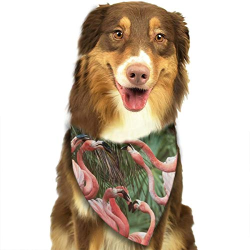 Pet Scarf Dog Bandana Bibs Triangle Head Scarfs Flamingo Tropical Accessories for Cats Baby Puppy ()