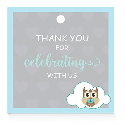 XOXOKristen Baby Shower Favor Tags, Owl Baby Shower Thank You Tags for Gifts -