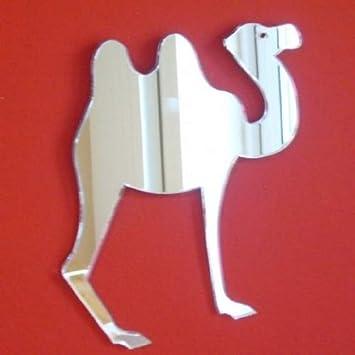 Amazon.com: 2 Humped Camel Espejo – 12 cm x 12 cm: Home ...