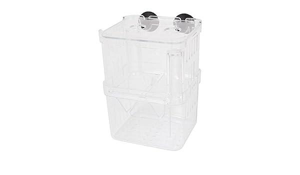 Amazon.com : eDealMax Las capas dobles de plástico acuario criadero ...