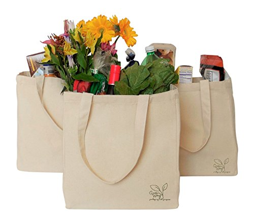 Eco-Friendly, Reusable, Sustainable Natural Canvas Tote (3 Pack)
