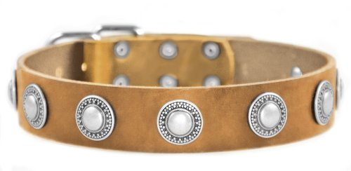 Dean and Tyler ''SIMPLE TREASURE'', Leather Dog Collar with Solid Nickel Hardware - Tan - Size 26-Inch by 1-1/2-Inch - Fits Neck 24-Inch to 28-Inch by Dean & Tyler
