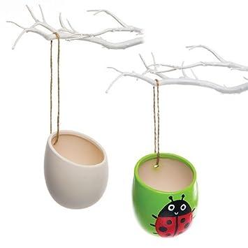 Baker Ross Keramik Blumentopfe Zum Aufhangen Fur Kinder Zum