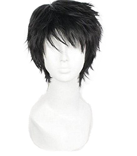 Short Black Men Fluffy Straight Anime Cosplay Heat Resistant Halloween Wig ()
