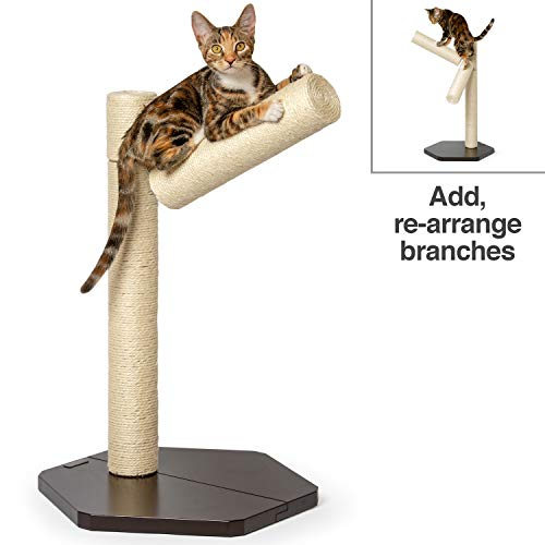 (PetFusion [New Branch-Out Cat Scratching Post. Tall Vertical Post with Innovative Tree Branch Design. Add-on kit & Replacement Posts Available.)