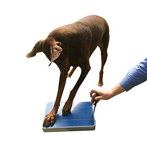 Digger Dog Nail File Stress Free Alternative to Dog Nail Clippers and Dog Nail Grinders (Blue Model ()