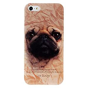 NEW Animal Series Pug Pattern Plastic Case for iPhone 5/5S