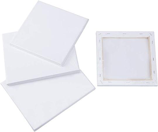 20 cm // 20 /× 25 cm Quadrato E Rettangolo 4 Pezzo 2 Dimensioni Assortite Mini Tela per Pannello di Tela Pittura A Olio Cavalletto NBEADS Tela Allungata