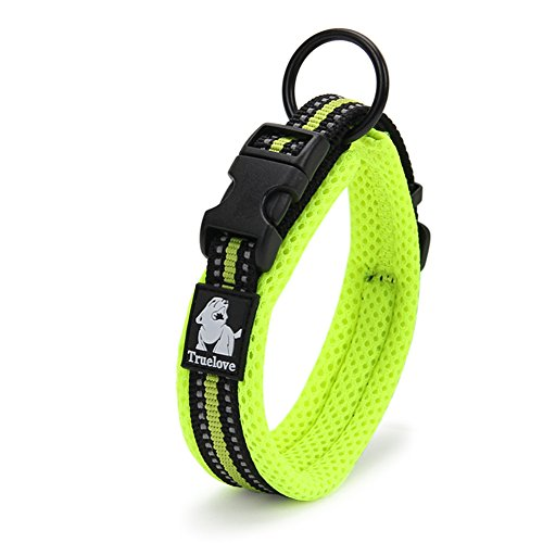 (Creation Core 3M Reflective Mesh Padded Dog Collar Adjustable Nylon Outdoor Adventure Pet Collar, Green XL)