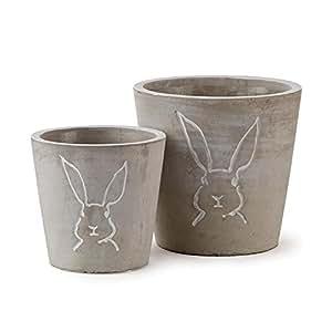 Peter Rabbit cachepots Med, Juego de 2