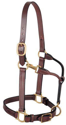 (Weaver Leather 3-in-1 All Purpose Halter)