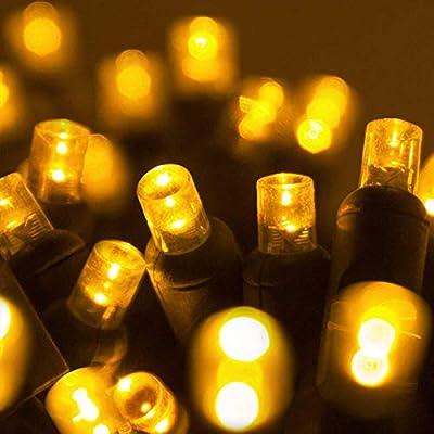 Amazon Com 70 5mm Led Gold Christmas Lights 24 Gold Mini Lights Holiday Lights Led String Lights Wide Angle Gold Christmas Lights Led Brightest Led Christmas Lights Home Kitchen