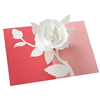 Amazon robert sabuda floral collection blank all occasion robert sabuda floral collection blank all occasion rose pop up greeting card single mightylinksfo