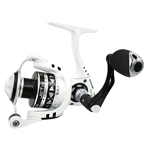 8BB Carp Spinning Reel Drag Force 18kg Speed Ratio 5.2:1 2000 6000 Model Metal Handle Saltwater Fishing Reel,White,8,5000 Series