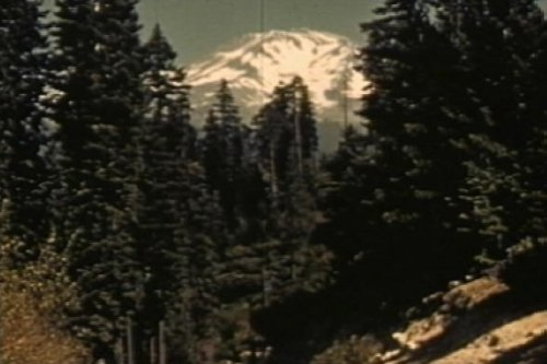 - 1942 US Forest Service Film: Wood for War [DVD]: Wood Products & The American Logging Industry During the WW2 War Effort