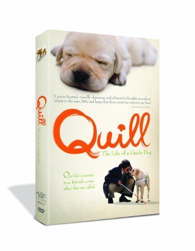 Quill: The Life of a Guide Dog by Music Box Films by Sai Yoichi by Music Box Films
