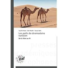 LES POILS DU DROMADAIRE TUNISIEN