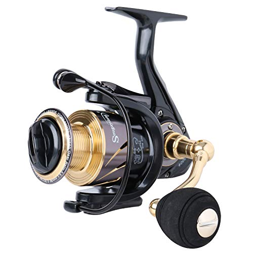 Sougayilang Spinning Reels Fishing Reel with 13 +1 Corrosion Resistant Ball Bearings, W-Ship Gearing, Silent Drive, SXS Braking System and Free Spare Graphite Spool for Angler