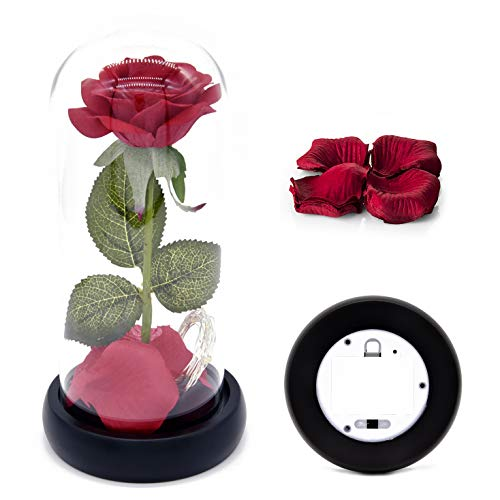 Beauty and The Beast Rose Kit, Red Silk Rose and Led Light with Fallen Petals in Glass Dome on Black Wooden Base for Home Decor Holiday Party Wedding Anniversary (Roses Black Red Silk)