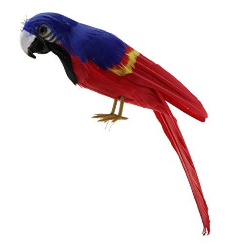 Perfk 全15色 オウム 鳥模型 30cm リアル 動物モデル インテリア 家 装飾 人工羽毛 - #13の商品画像