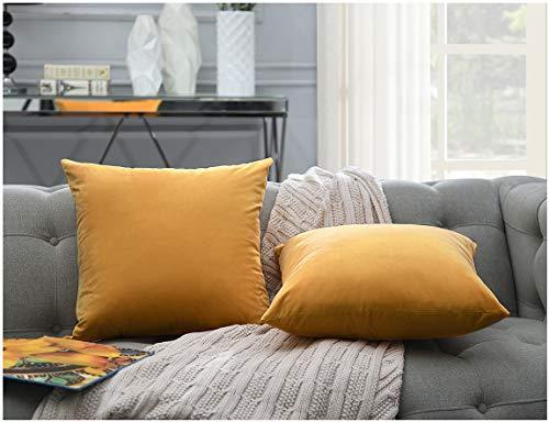 Comfortland Pack of 2, Soft Velvet Soild Decorative