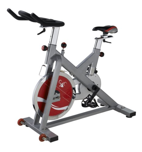 Indoor Cycling Bike by Sunny Health & Fitness - SF-B1110S (Side Crank Arm)