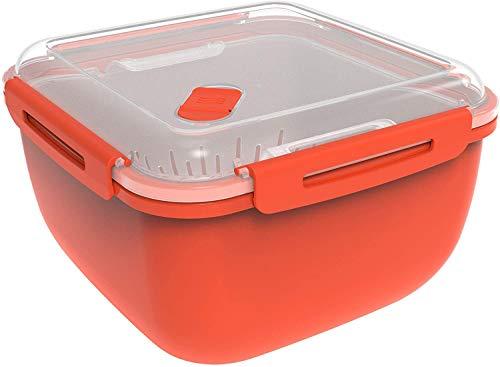Rotho, Memory Microwave, Stoomboot 2.5l met zeefinzet voor magnetron en stoomoven, Kunststof (PP) BPA-vrij, rood…
