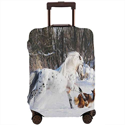 Travel Luggage Cover,Legendary Appaloosa Pony And Sable Border Collie Runs Gallop In Winter Photo Suitcase Protector