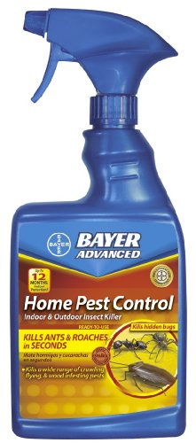 bayer-advanced-502790-home-pest-control-indoor-and-outdoor-insect-killer-ready-to-use-24-ounce