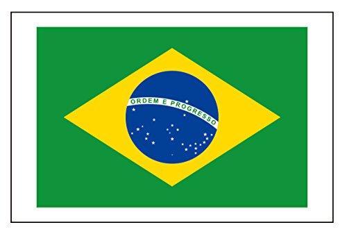 8 Large Brazil Flag Tattoos: Brasil, Brazilian World Cup Party -