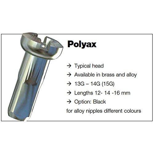 Sapim Polyax Brass Bicycle Wheel Spoke Nipple Bag of 100 Silver