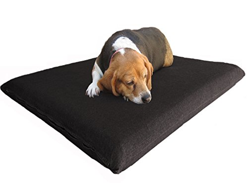 Dogbed4less Memory Foam Dog Bed for Small Medium Pet with Waterproof Internal Cover, Canvas Black External Cover 34X27X3 Inches Black Plush Dog Bed