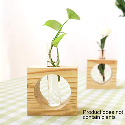 (Water Planting Glass Vase,Test Tube Planter Modern Flower with Retro Solid Wooden Stand Tabletop for Hydroponics Plants Home Garden)