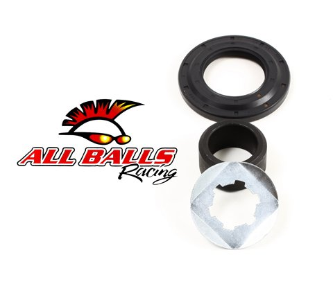 All Balls Countershaft Seal Kit 25-4031 06-12 YAMAHA RAPTOR700: Counter Shaft (Countershaft Seal)