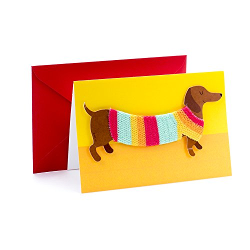 Hallmark Signature Birthday Card with Removable Dachshund Magnet (Dog in Sweater)