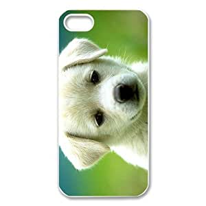 Stylish Design Cute Pet Doggy Canis lupus familiaris Diy High Quality Protective Durable Back Case Laser Cover Shell for iPhone 5/5S-5