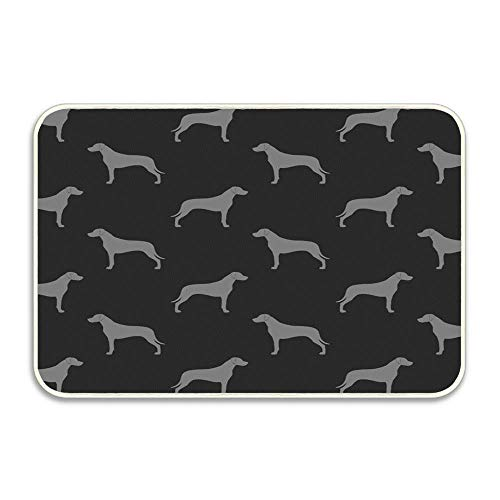 Rhodesian Ridgeback Silhouettes Doormat Super Absorbent Non Slip Rubber Entrance Rug for Front Door Inside Outside 16x24 Inch