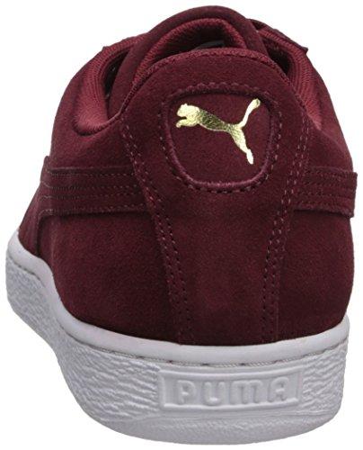 Adult white Suede Shoe PUMA Gold Cabernet team Classic fxqdX8z