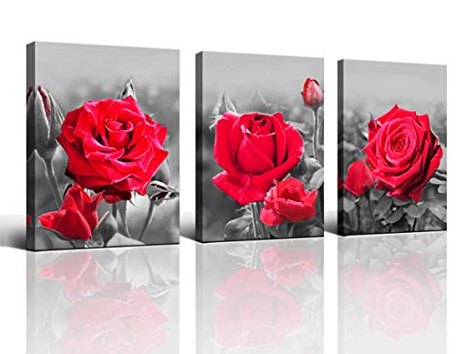 Wall Art Bedroom Simple Living Black and White Red Rose Flower Canvas Wall Art Deco 12