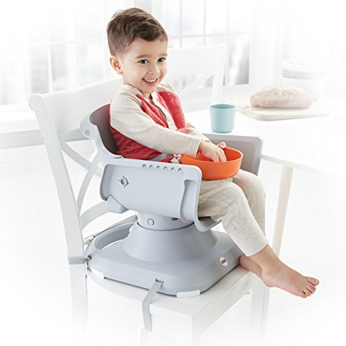 Fisher-Price SpaceSaver High Chair, Multicolor by Fisher-Price (Image #13)