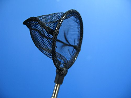 Shrimp and fish NET Round (S) Crystal Red Shrimp Cherry bee stainless steel moss by Aquarium Equip