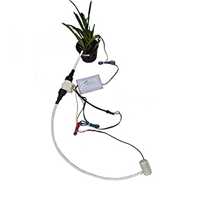 Buy Automatic Plant Watering System Online at Low Prices in India