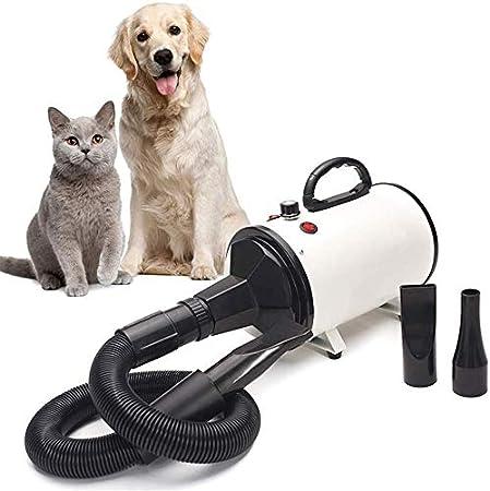 Secador De Pelo para Perros Y Gatos 2800W Mascotas Secador De Bajo Ruido Secadora De Pelo para Mascotas Caninas Calentadora - Calor Y Velocidad Ajustable - Negro: Amazon.es: Hogar