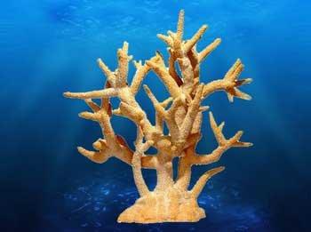 Deep Blue Professional ADB80094 Staghorn Coral Peach for Aquarium, 17 by 9 by 17-Inch by Deep Blue Professional