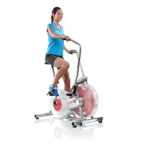 Exercise Bike Next Day Delivery: Schwinn AD2 Airdyne Exercise Bike