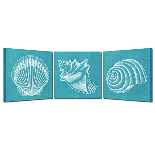 (Kreative Arts Canvas Set of 3 Home Decoration Mediterranean Sea Shells Canvas Print Wall Art Teal Seashell Coastal Decor Picture Shell Painting Print on Canvas for Bathroom Kitchen 16x16inchx3pcs)