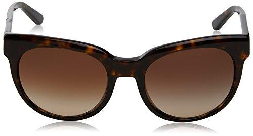 Marrón Gafas Dark DKNY 0Dy4143 para de Mujer Tortoise Sol 5vSxq4wY