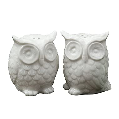 Creative Co-Op Ceramic Owl Salt and Pepper Shaker, Set of 2